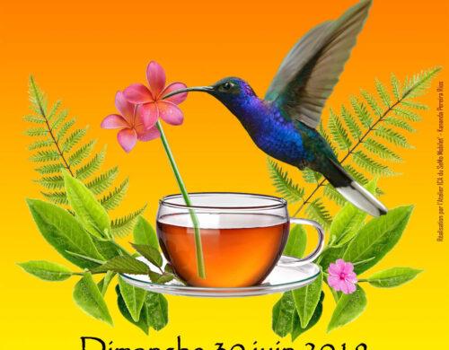 Journée « Thé »